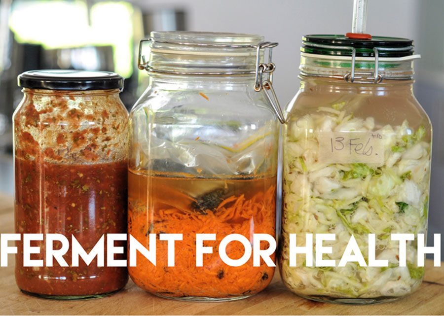 ferment-for-health